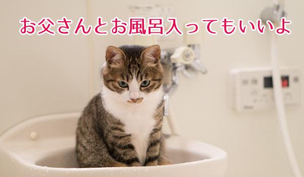 子供とお父さんをお風呂に入れることに成功しました