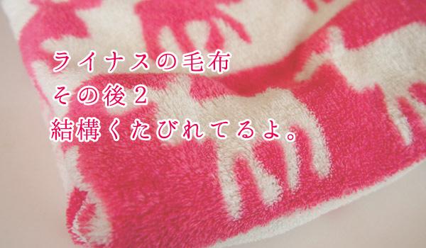 ライナスの毛布その後2