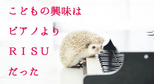 ピアノよりRISU